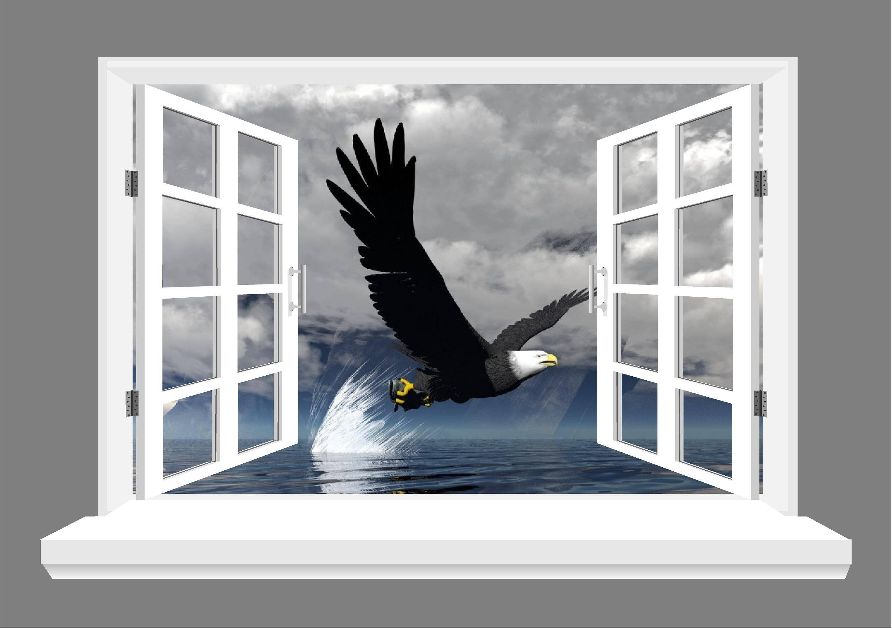 Wall Art Design Ideas: Eagly Flying 3D Wall Art Bird Windows For Best And Newest 3D Wall Art Window (View 19 of 20)