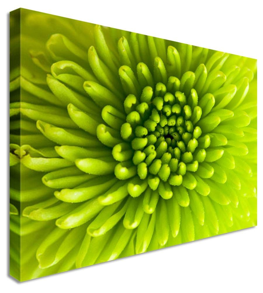 Wall Art Designs: Cool High Pixel Green Canvas Wall Art With Best Pertaining To Most Up To Date Large Green Wall Art (View 5 of 20)
