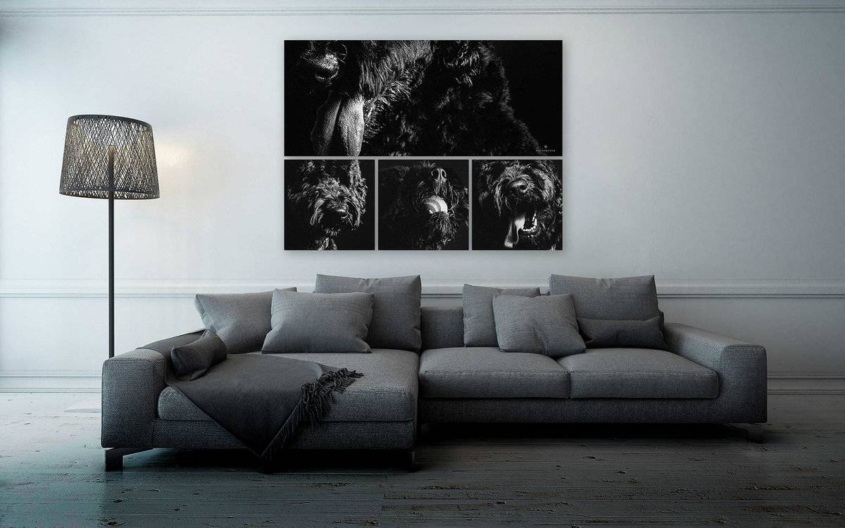 Wall Art – Signature Collections At Fia Forever Photography Intended For Most Current Photography Wall Art (View 21 of 25)