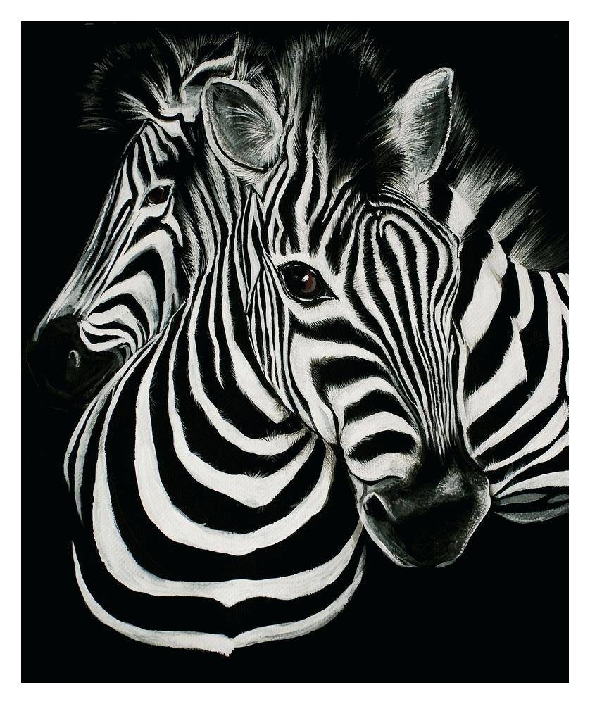Wall Decor : Wall Room 101 Hd Prints Oil Painting On Canvas Zebra With Most  Current