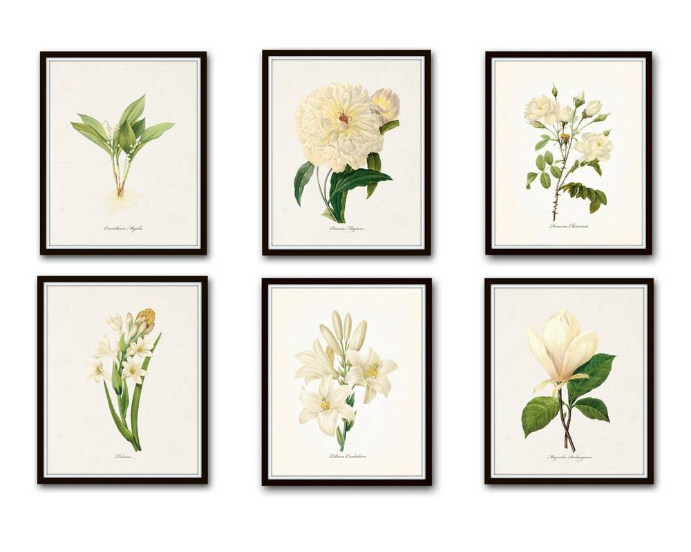 White Botanical Print Set No (View 14 of 20)