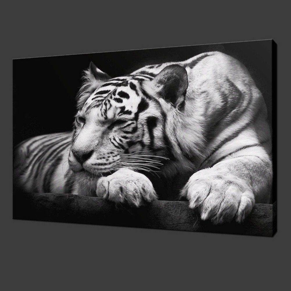 White Tiger On Black Modern Picture Wall Art Canvas Prints Home Within Most Up To Date Black And White Wall Art (View 16 of 16)