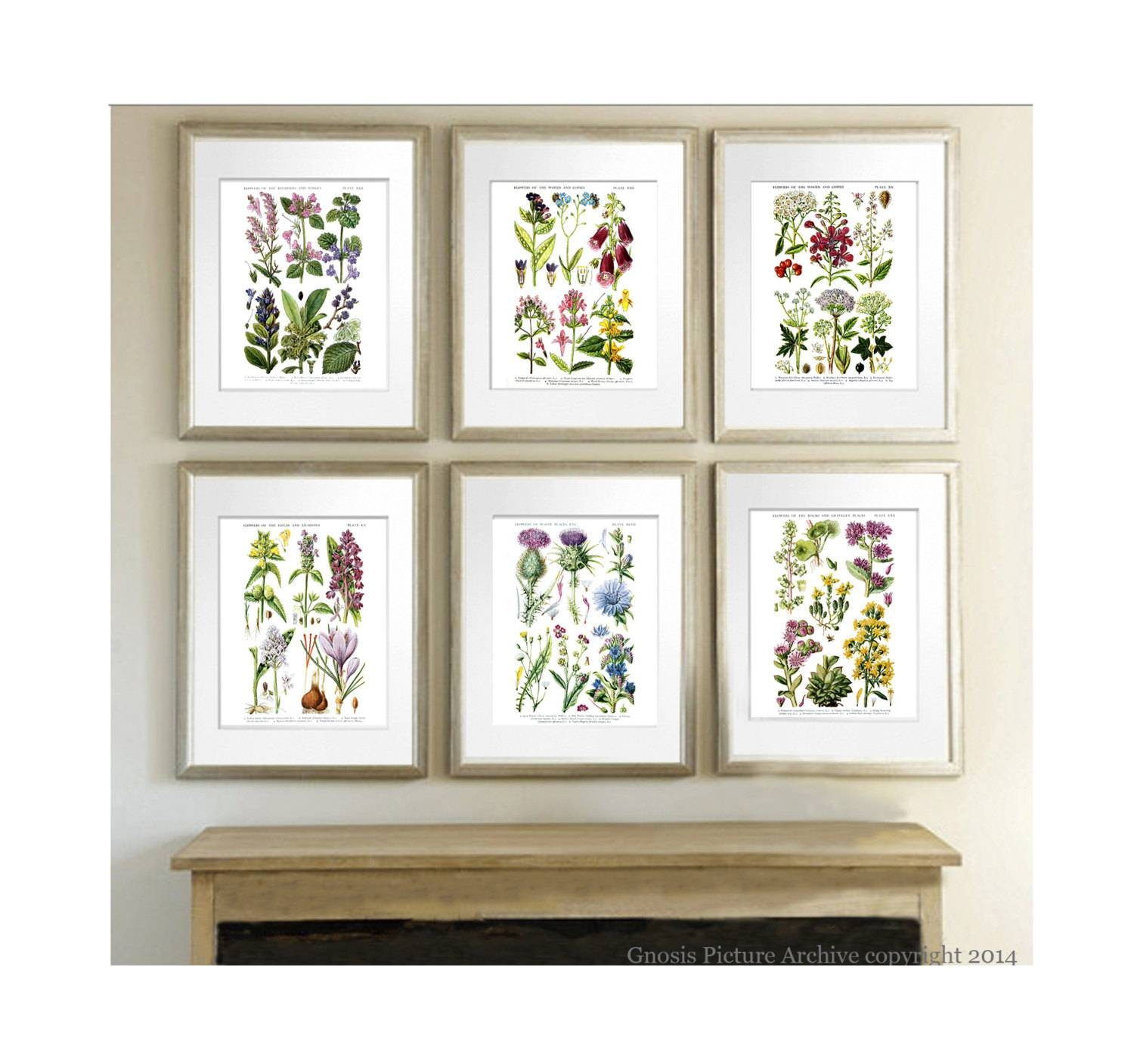 Wild Flowers Botanical Prints Set Of 6 Botanical Prints In Most Recent Botanical Prints Etsy (View 2 of 20)
