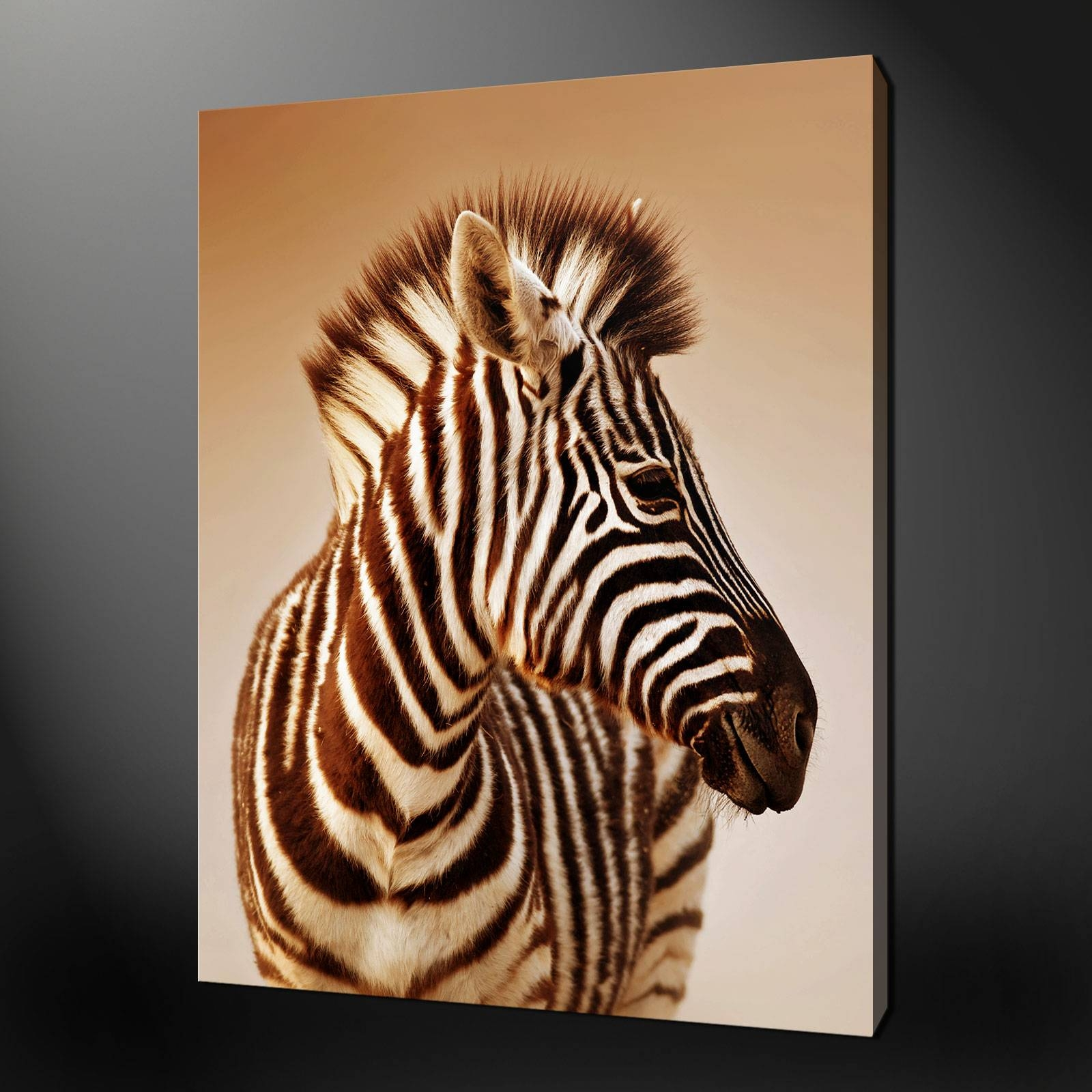 Zebra Wall Art Fabulous Large Wall Art On 3d Wall Art – Home Intended For Most Up To Date Zebra 3d Wall Art (View 3 of 20)