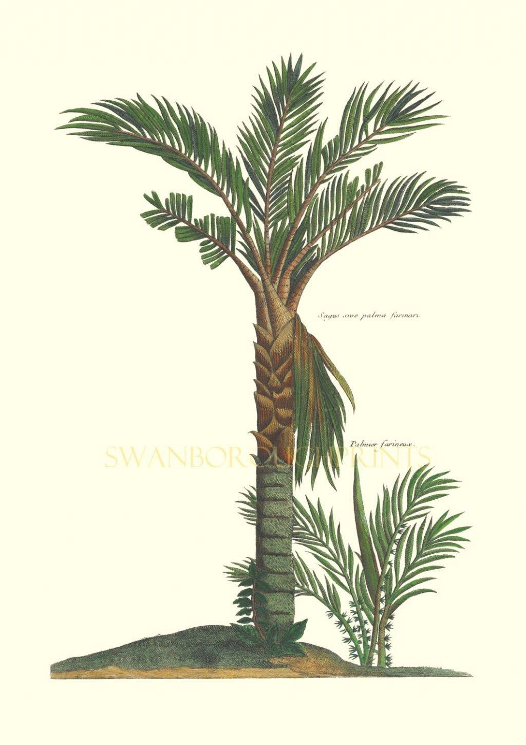 Wall Arts ~ Palm Tree Wall Art Zoom Palm Tree Wall Art Plaque Inside Newest Metal Wall Art Palm Trees (View 8 of 20)