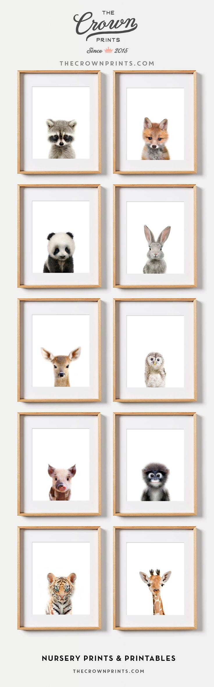 Best 25+ Baby Animal Nursery Ideas On Pinterest | Animal Nursery Within Recent Baby Animal Wall Art (View 3 of 20)