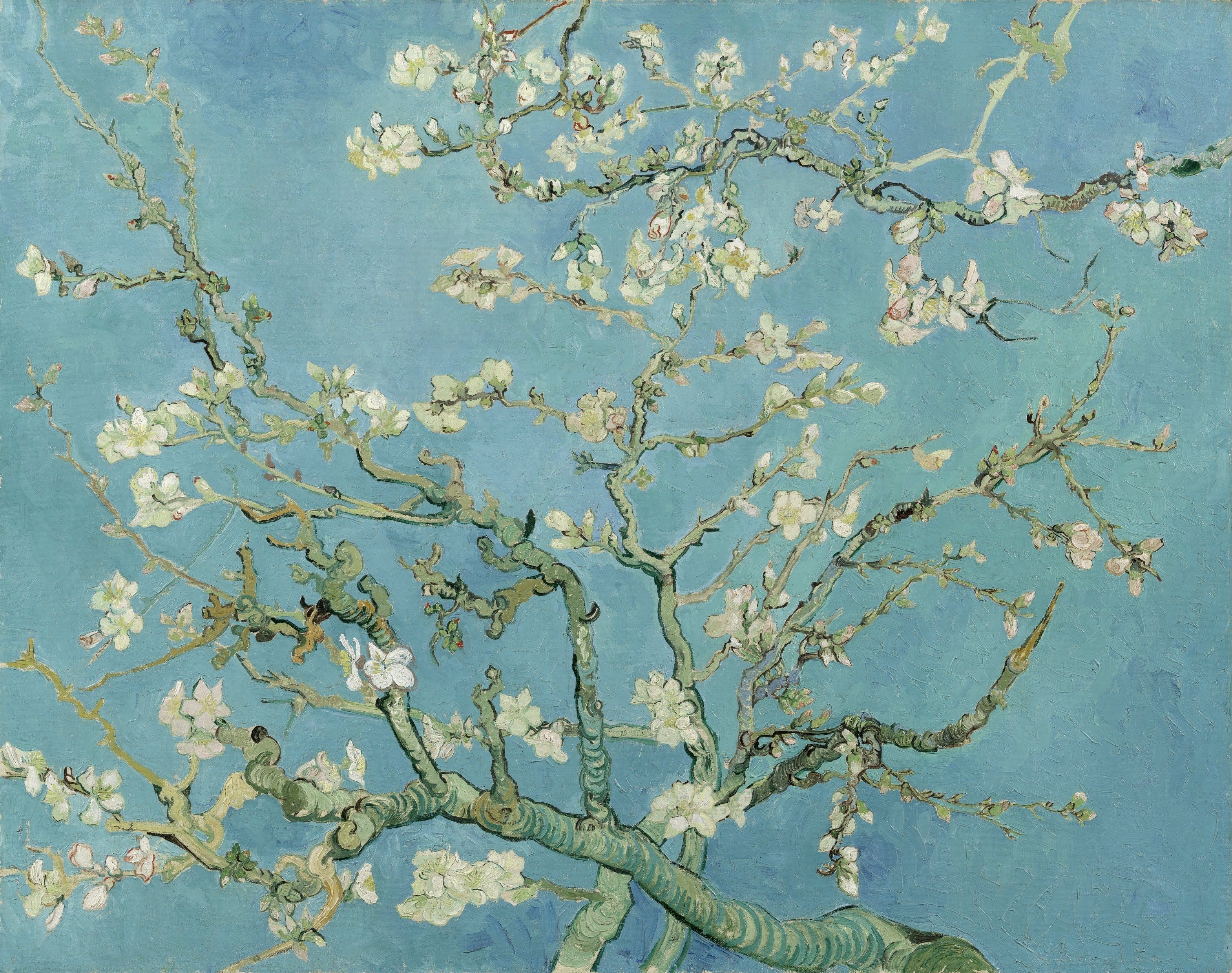 File:vincent Van Gogh – Almond Blossom – Google Art Project Within Most Recently Released Almond Blossoms Vincent Van Gogh Wall Art (View 8 of 20)