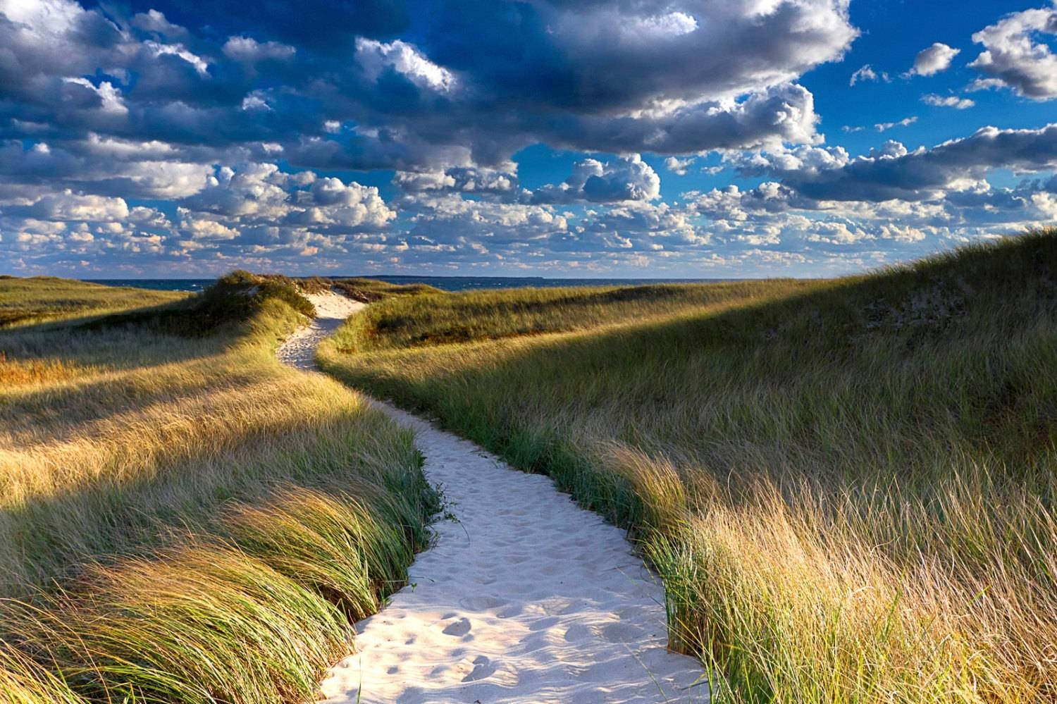 Large Beach Photography Marthas Vineyard Dunes Path Photo With Regard To 2017 Large Coastal Wall Art (View 19 of 20)