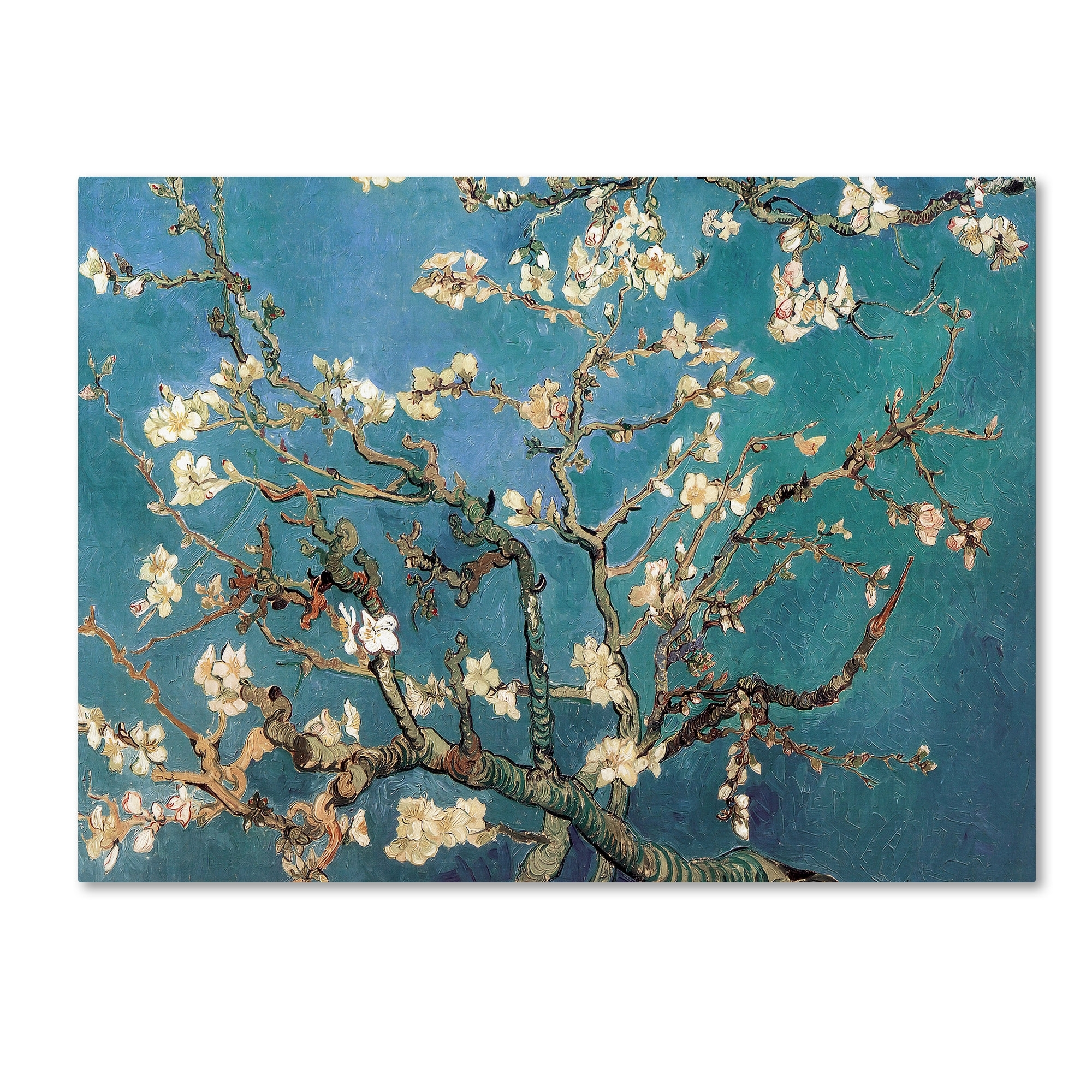 Trademark Art Almond Blossoms'vincent Van Gogh Framed On With Most Popular Almond Blossoms Vincent Van Gogh Wall Art (View 12 of 20)