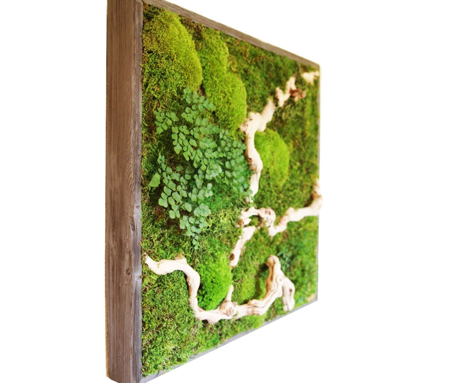 15 Spectacular Moss Wall Art Designs That Redefine The Living Wall With Regard To 2017 Green Wall Accents (View 1 of 15)