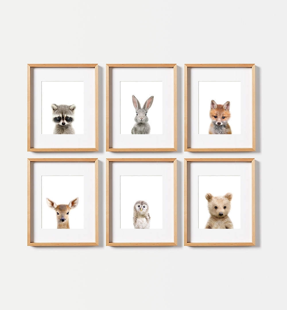 6 Baby Animal Prints, Use Coupon Moreprints For 40% Off, Nursery Regarding Most Popular Framed Animal Art Prints (View 2 of 15)