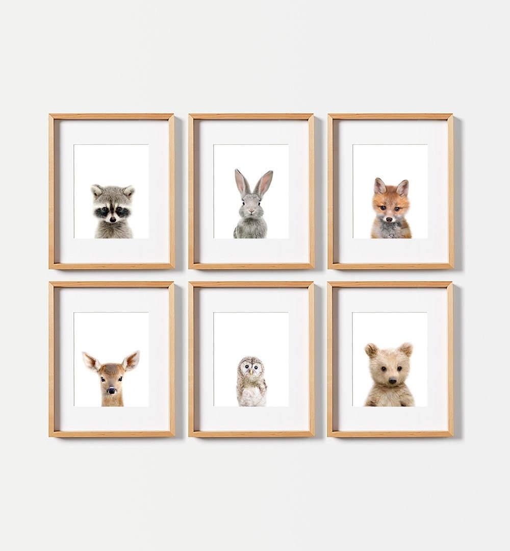 6 Baby Animal Prints, Use Coupon Moreprints For 40% Off, Nursery Regarding Most Popular Framed Animal Art Prints (View 2 of 15)