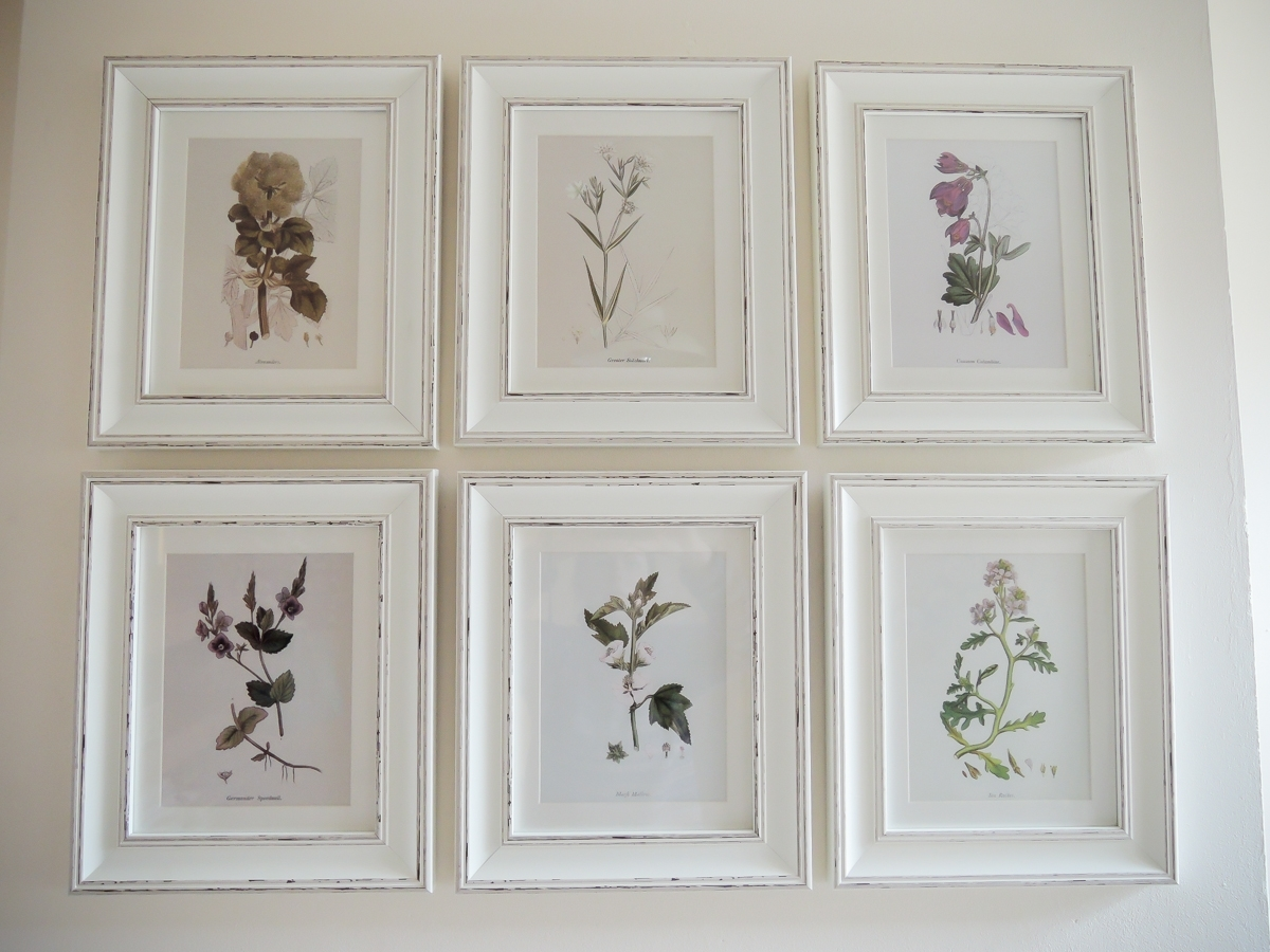 A Handmade Cottage: Botanical Print Feature Wall & How To Hang In Newest Framed Botanical Art Prints (View 12 of 15)