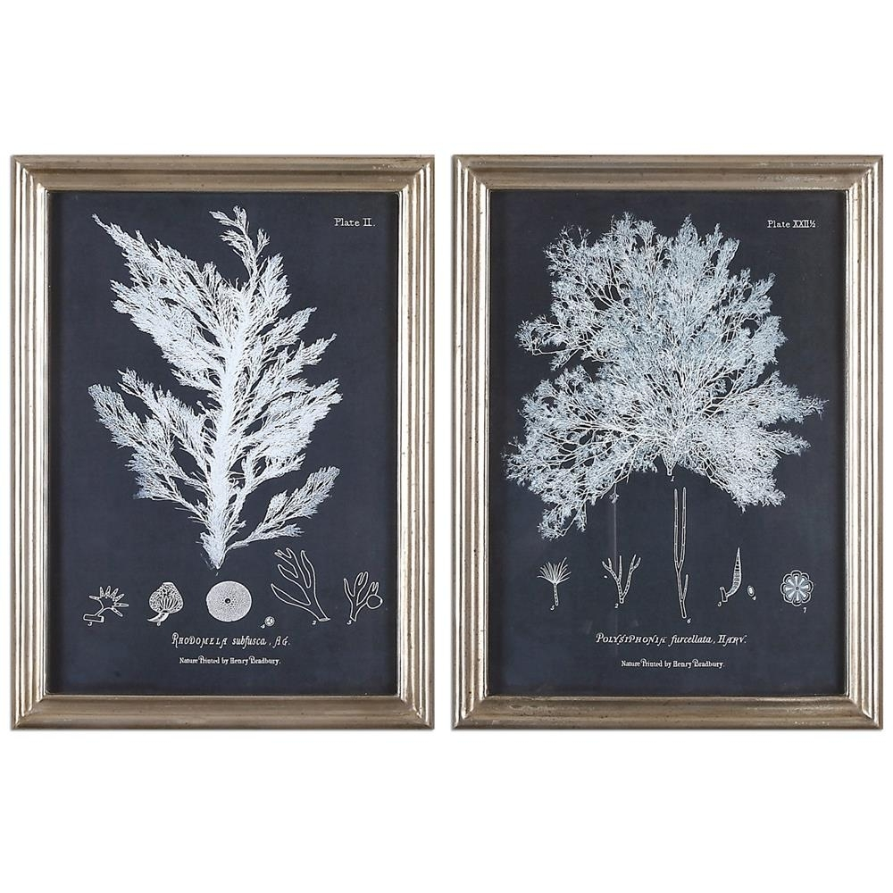 Anthozoa Coastal Beach Coral Botanical Silver Frame Prints – Pair Throughout 2017 Framed Coral Art Prints (View 2 of 15)