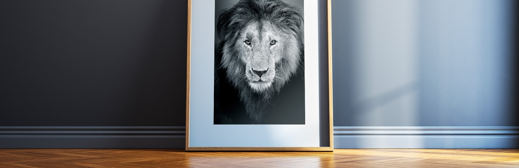 Beautiful Fine Art Wildlife Prints, For Your Home Or Office (View 3 of 15)