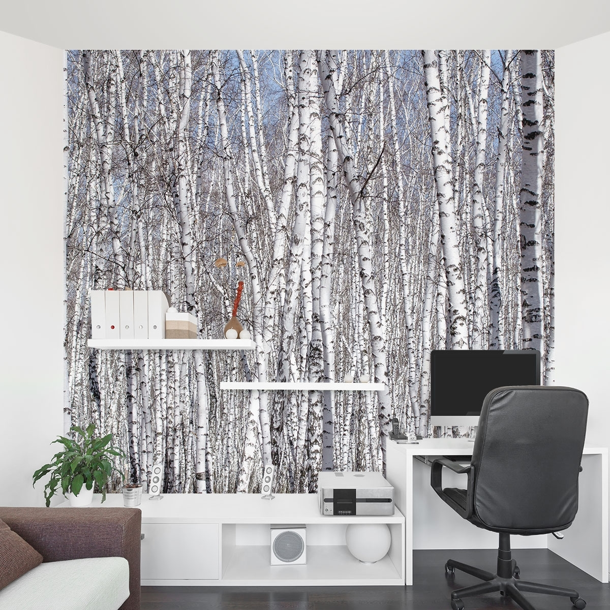 Birch Trees Wall Mural Pertaining To Most Current Wall Accent Decals (View 3 of 15)