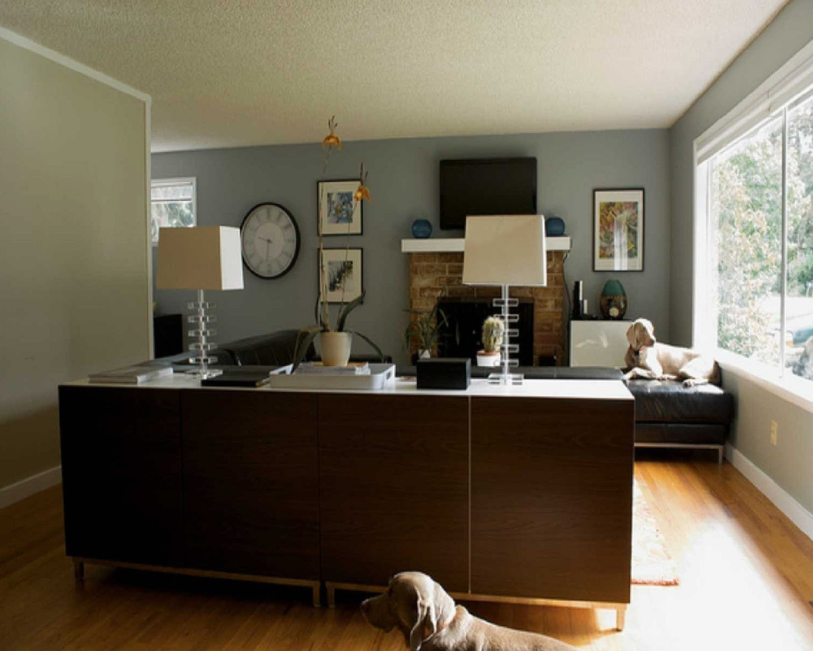 Blue Paint On The Wall Accent Wall Ideas For Living Room Dark Grey With Latest Gray Wall Accents (View 12 of 15)