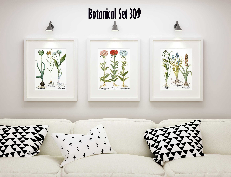 Botanical Print Set Of 3, Framed Botanical Art, Vintage Floral Throughout 2017 Framed Botanical Art Prints (View 4 of 15)