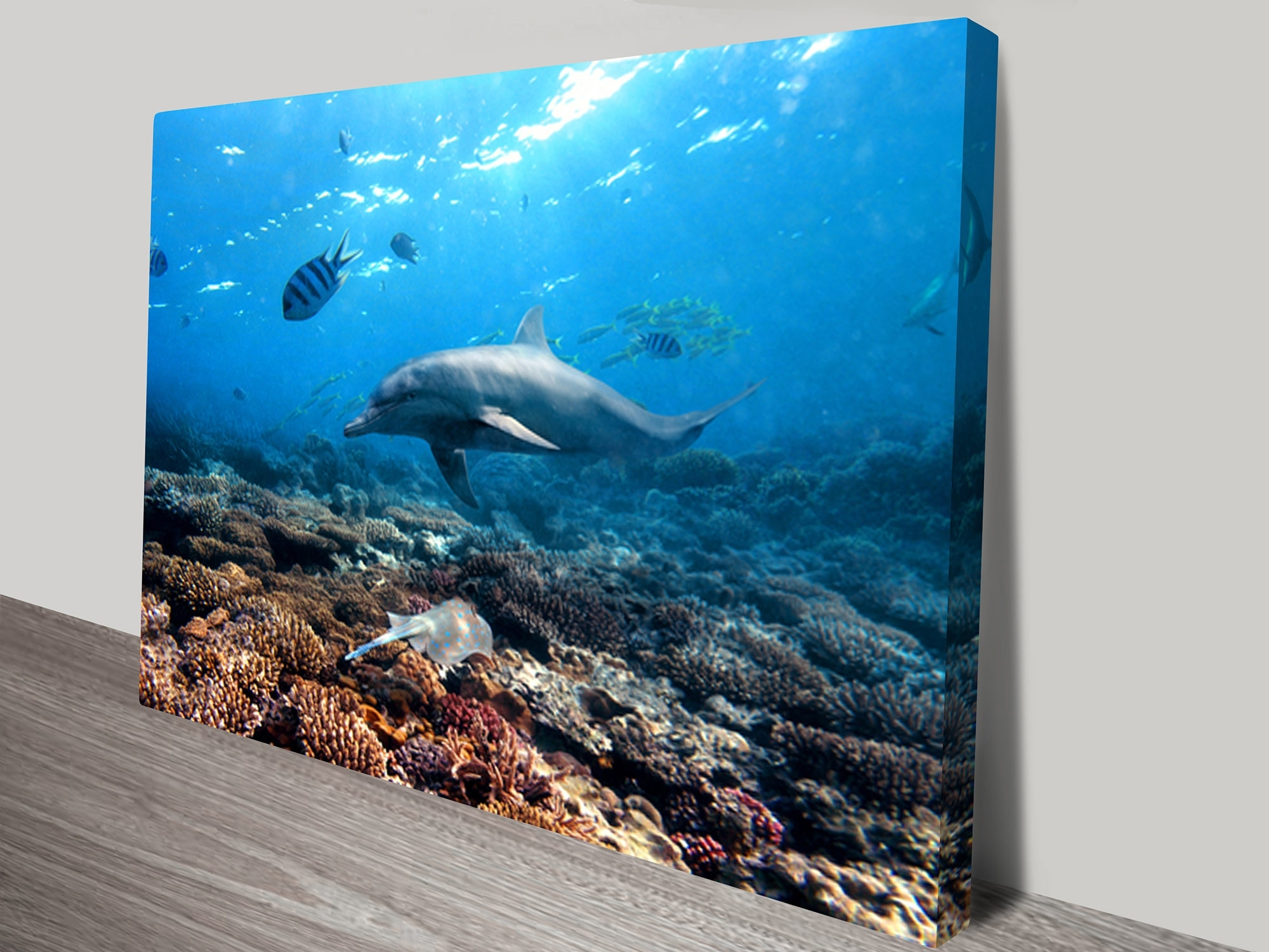 Buy Dolphins Canvas Prints Geelong Melbourne Australia Within Most Popular Geelong Canvas Wall Art (View 9 of 15)