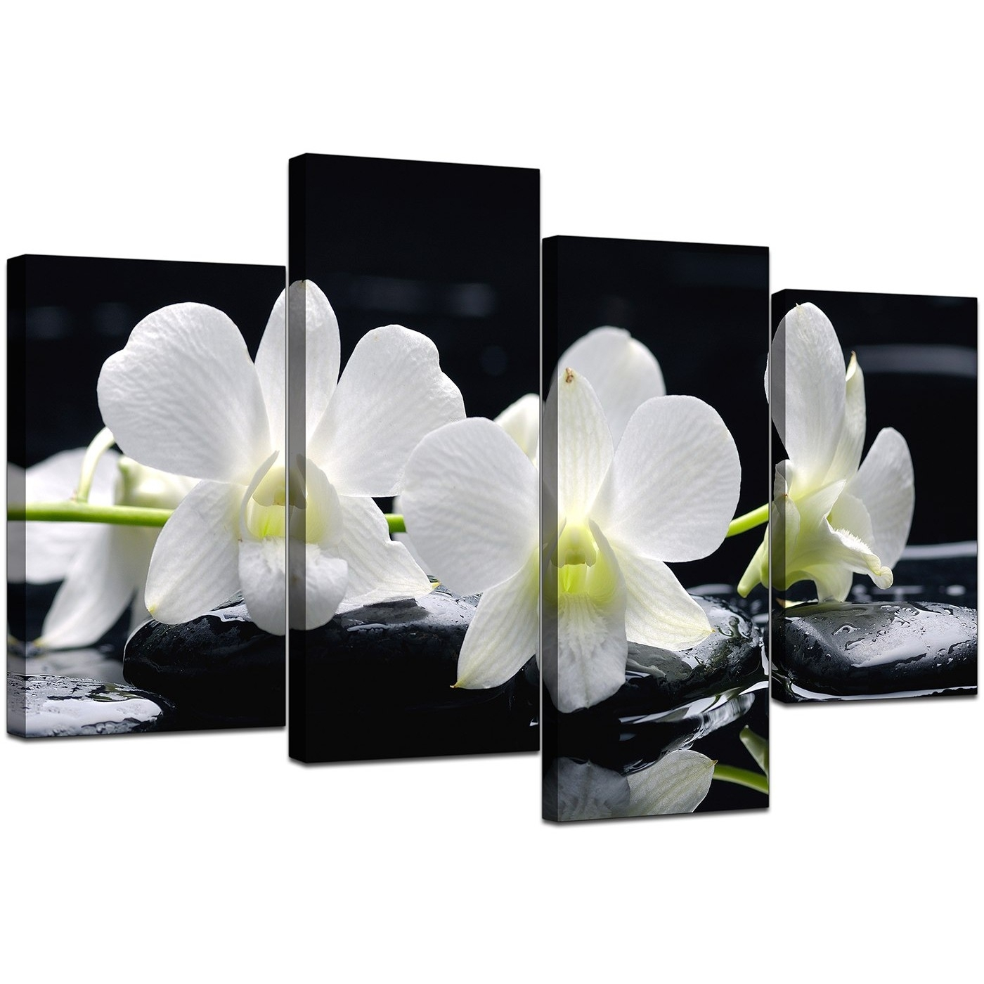 Canvas Wall Art Of Orchids In Black & White For Your Living Room For Recent Orchid Canvas Wall Art (View 3 of 15)