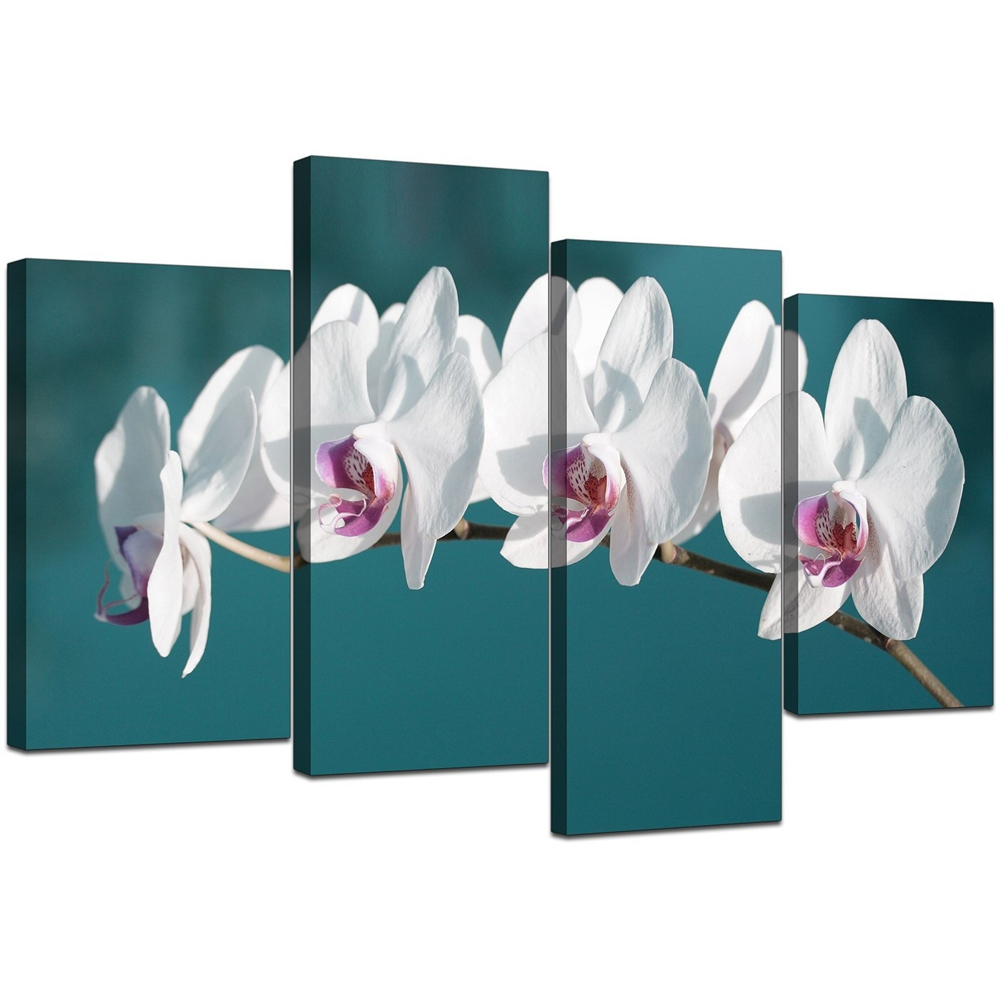 Canvas Wall Art Of White Orchids On Teal Background For Your Office Throughout Latest Orchid Canvas Wall Art (View 12 of 15)