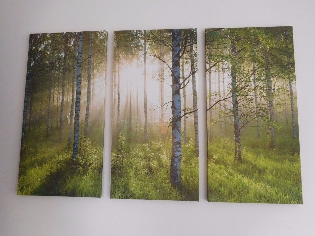 Canvas Wall Art Prints Pictures Forest Trees Landscape – 3 Parts Regarding Most Up To Date Gumtree Canvas Wall Art (View 5 of 15)