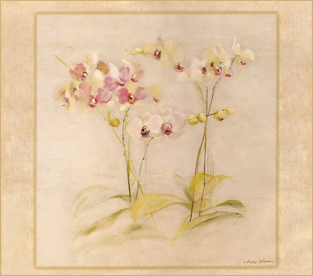 Cheri Blum | Floral Art | Pinterest In Newest Cheri Blum Framed Art Prints (View 12 of 15)