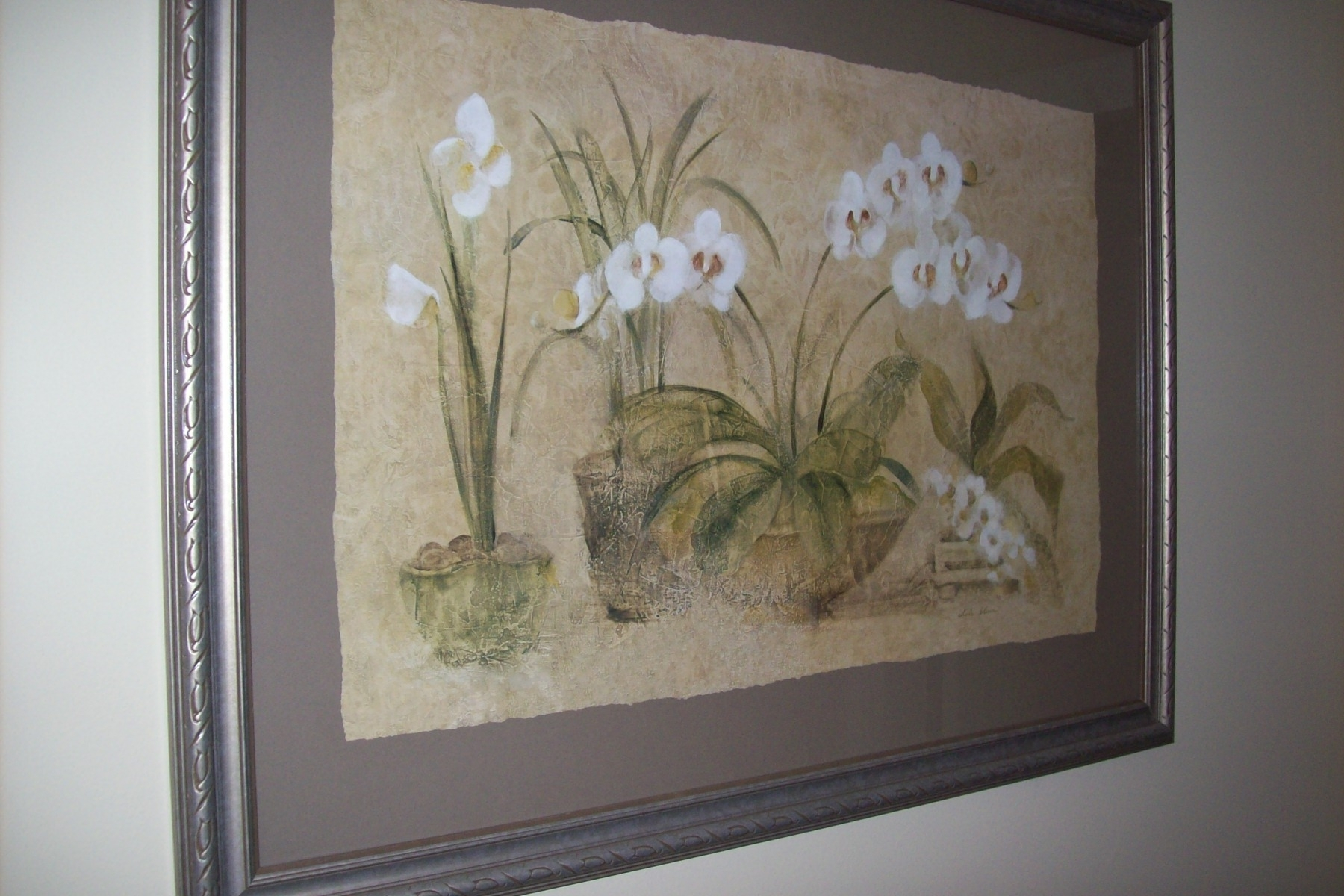 Cheri Blum Orchid Print Set–$100 | Greatstuff4Sale's Blog With Regard To Most Up To Date Cheri Blum Framed Art Prints (View 3 of 15)