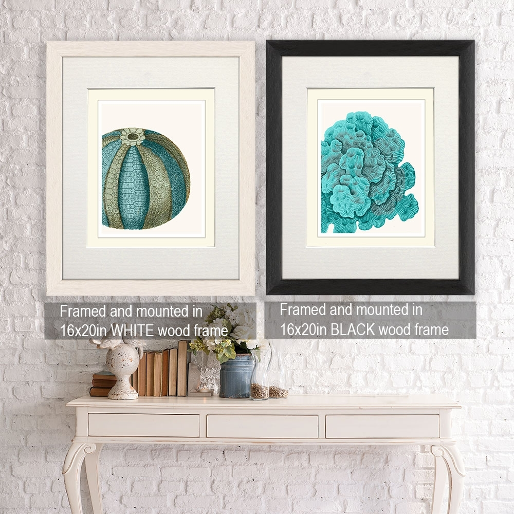 Collection, 4 Prints, Blue Corals And Sea Urchins | Coral Inside Current European Framed Art Prints (View 9 of 15)