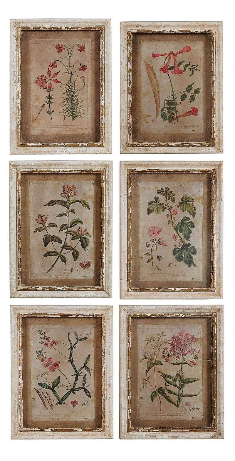 Colonial Williamsburg Botanical Print Collection Price: $ (View 4 of 15)