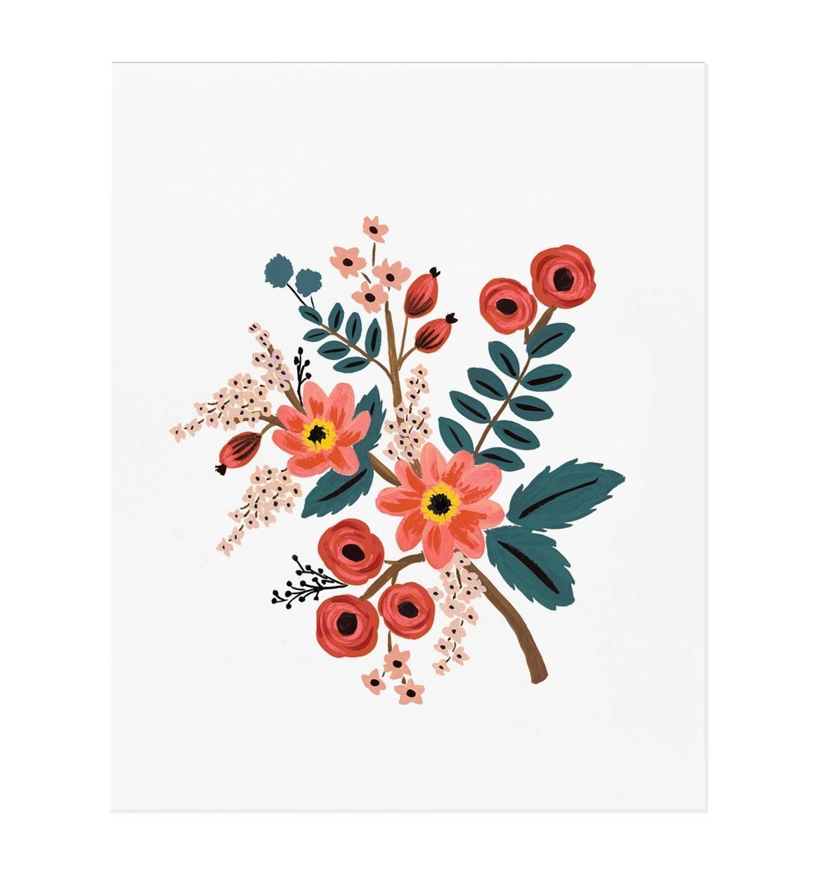 Coral Botanical Art Printrifle Paper Co.   Made In Usa Within Most Current Framed Coral Art Prints (Gallery 13 of 15)