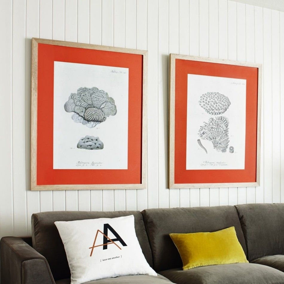Coral Framed Prints – View All Home Accessories – Home Accessories Throughout Most Popular Framed Coral Art Prints (View 1 of 15)