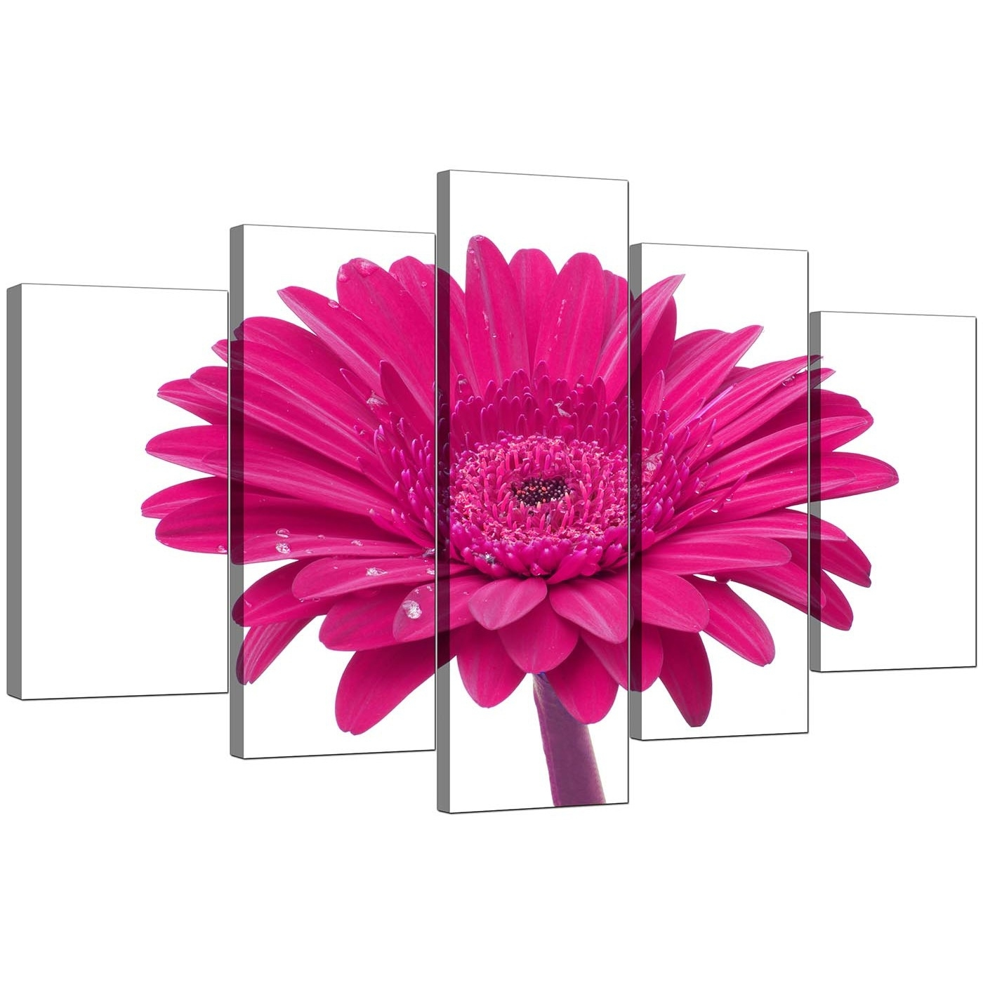 Extra Large Flower Canvas Wall Art 5 Piece In Pink Regarding Best And Newest Pink Canvas Wall Art (View 10 of 15)