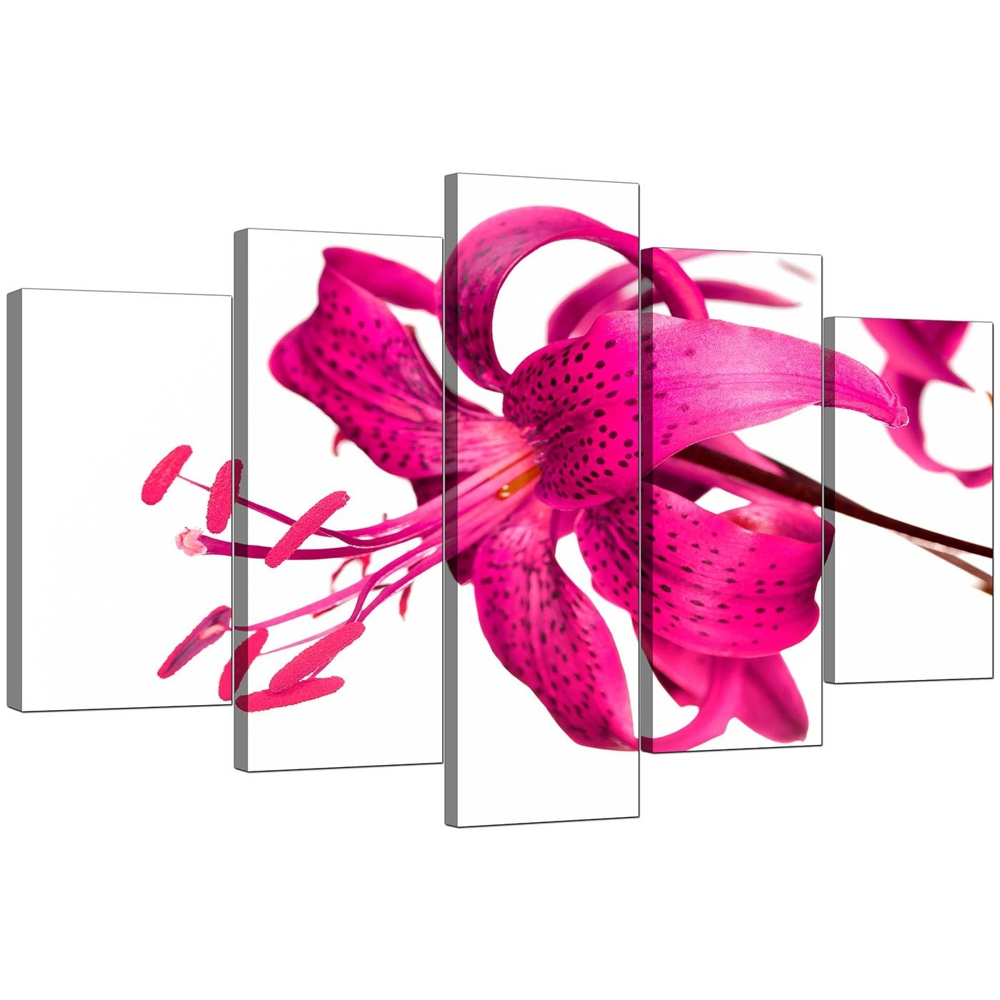 Extra Large Lily Canvas Wall Art Set Of 5 In Pink With Most Current Girl Canvas Wall Art (View 11 of 15)