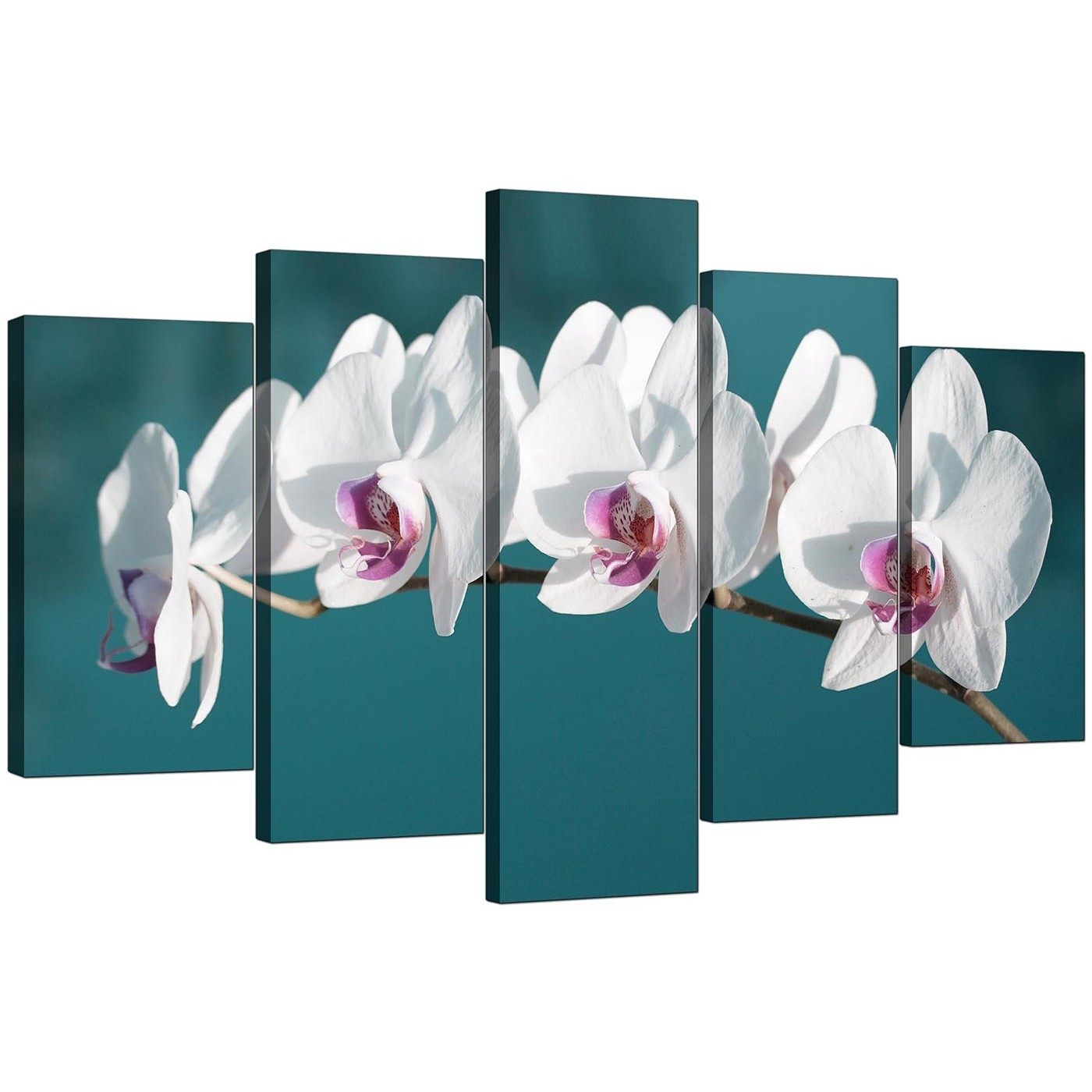 Extra Large Orchids Canvas Prints 5 Panel In Teal In Most Current Orchid Canvas Wall Art (View 3 of 15)