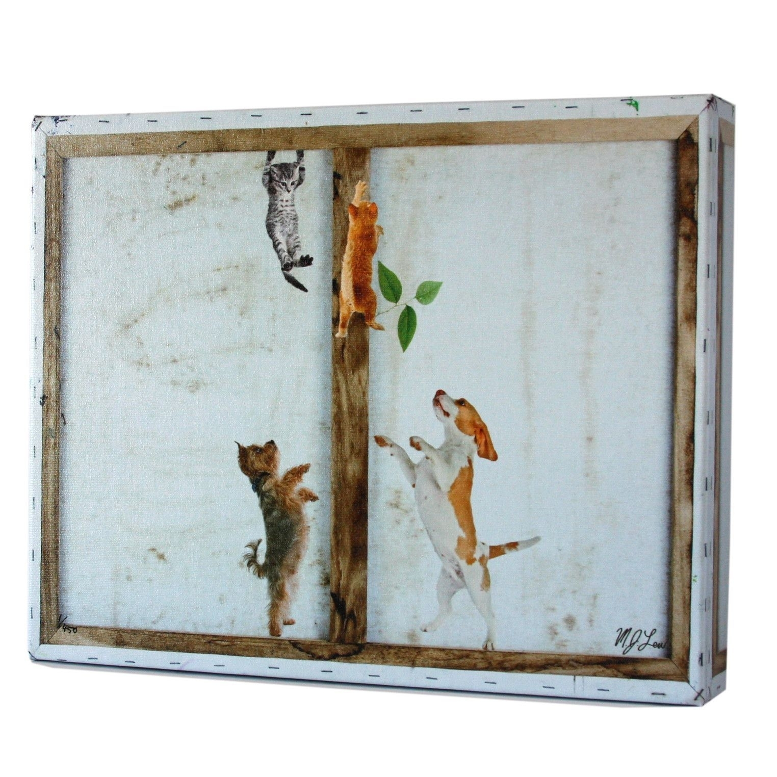 Frame Series: Cats & Dogs Print | Funky Art, Printing And Art Pieces For Latest Funky Art Framed Prints (View 8 of 15)