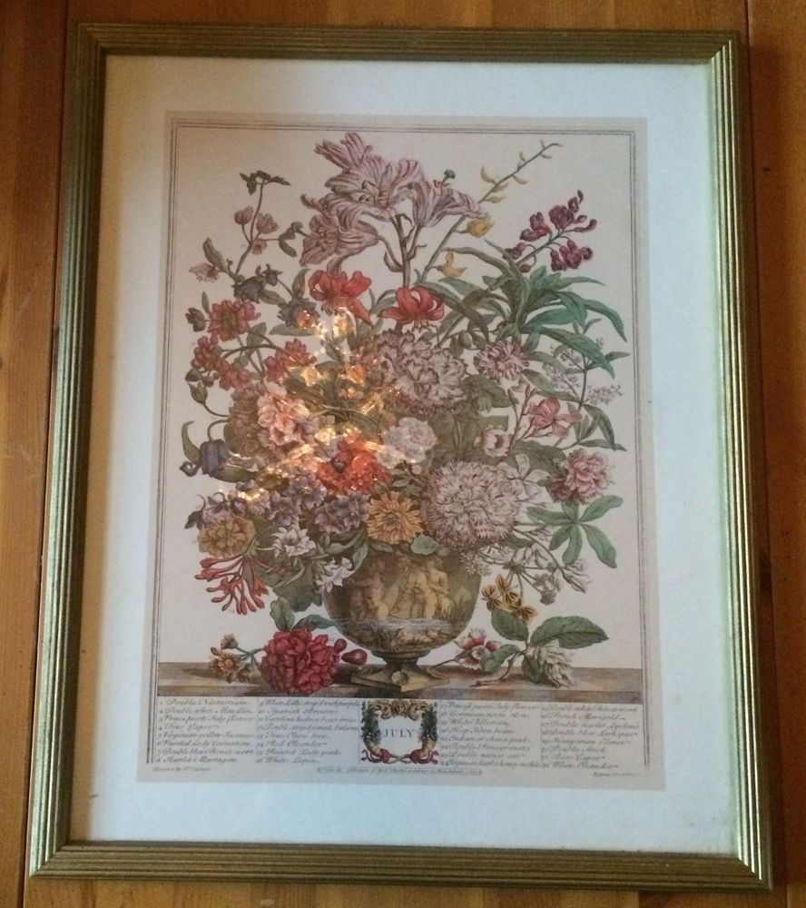 Framed Botanical Print Flowers Bouquet Month Of July Robert Furber With Regard To Most Current Framed Botanical Art Prints (View 14 of 15)