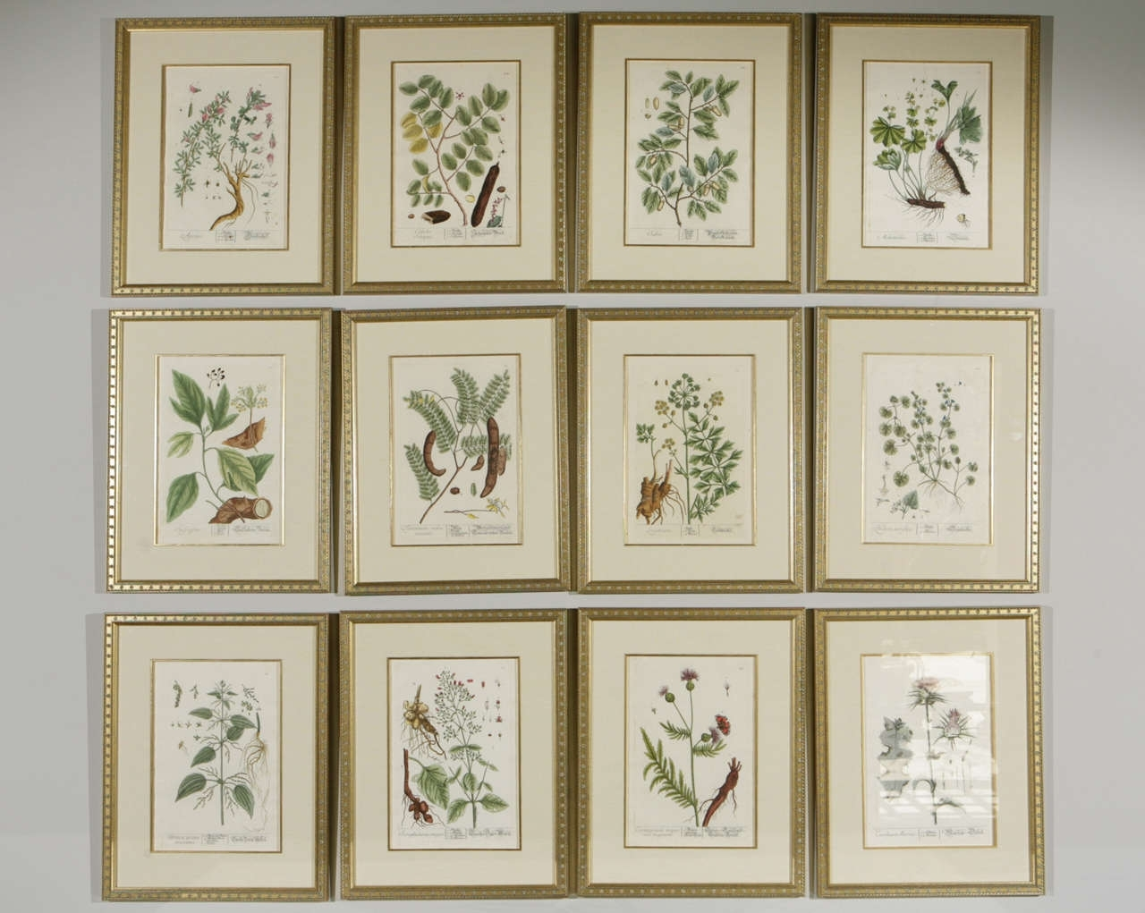 Framed Botanical Prints Sets | Sorrentos Bistro Home Throughout Most Popular Framed Art Prints Sets (View 5 of 15)