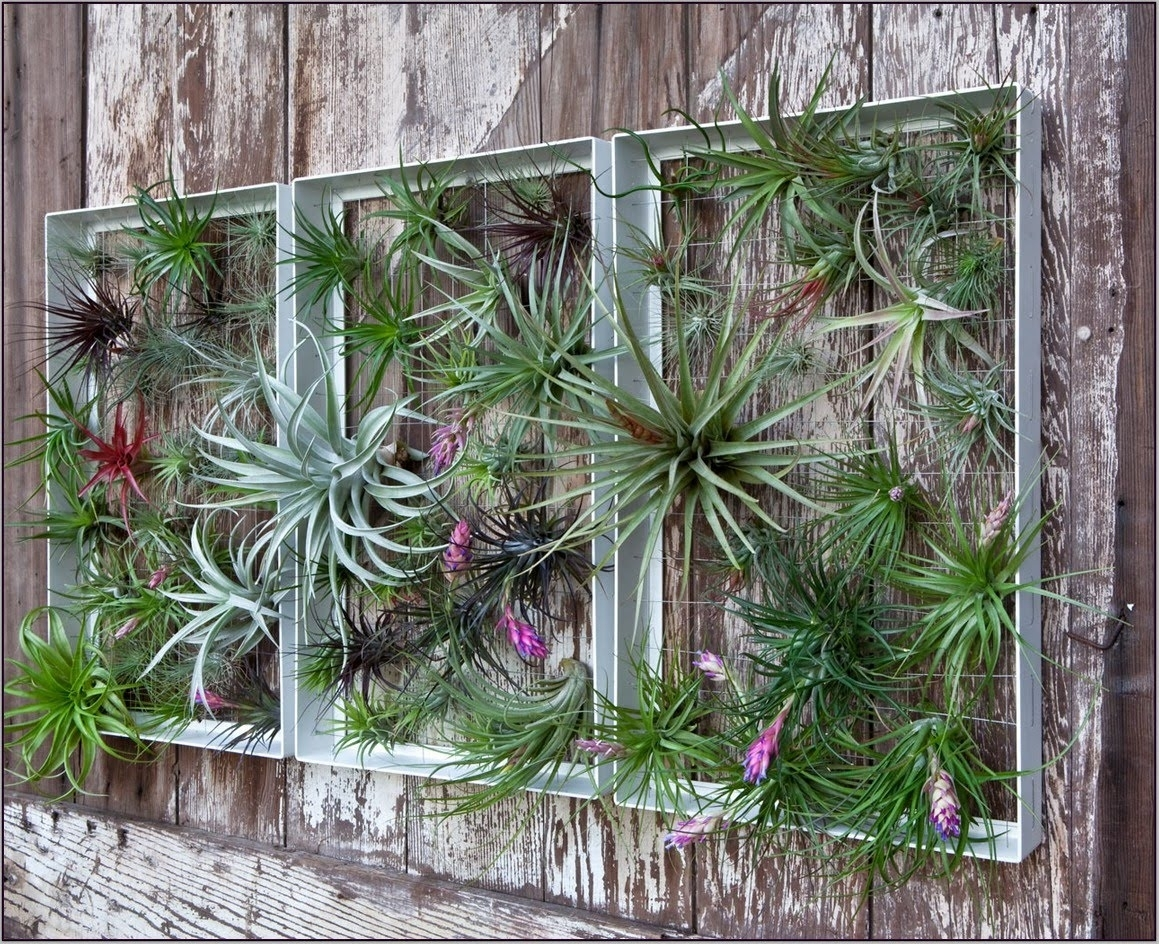 Garden Wall Decorations – Gardening Design With Regard To Recent Garden Wall Accents (View 6 of 15)