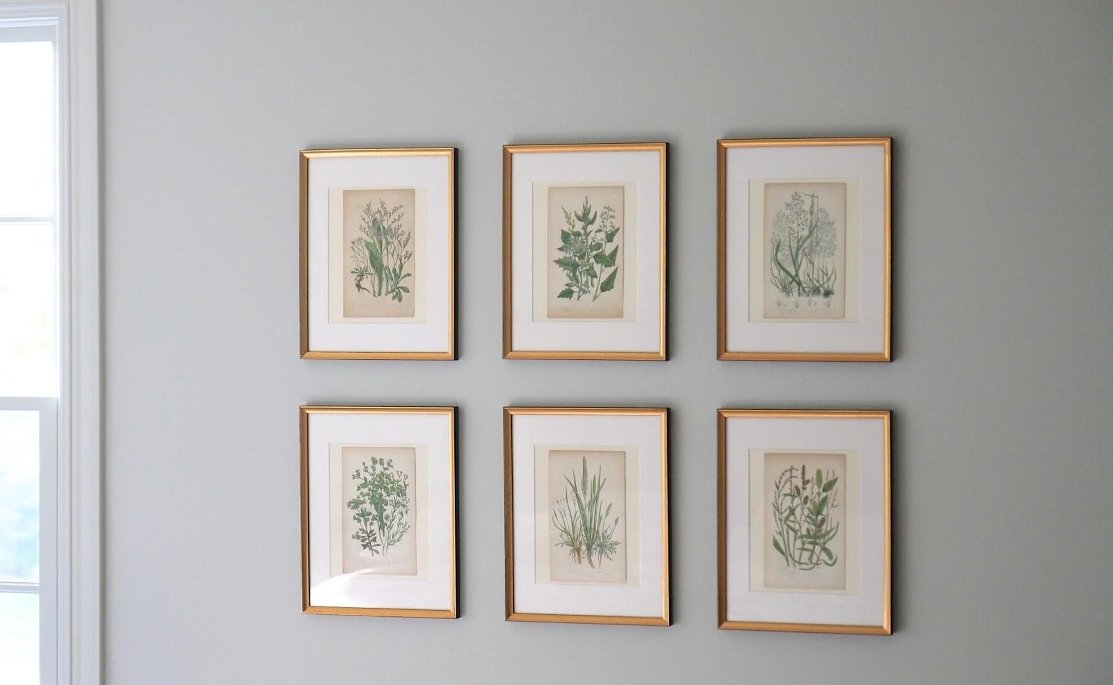 Jenny Steffens Hobick: Framing Botanicals, Antique Mirror Find Inside Latest Antique Framed Art Prints (Gallery 5 of 15)