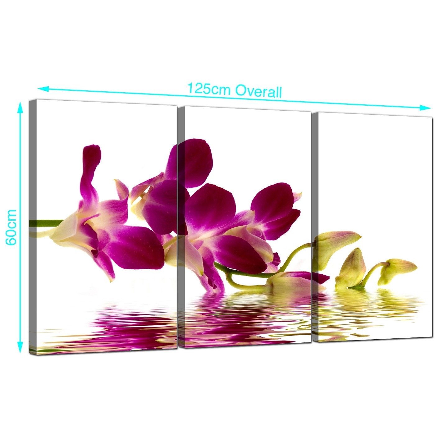 Orchids Canvas Wall Art Set Of 3 For Your Living Room In 2017 Orchid Canvas Wall Art (Gallery 1 of 15)