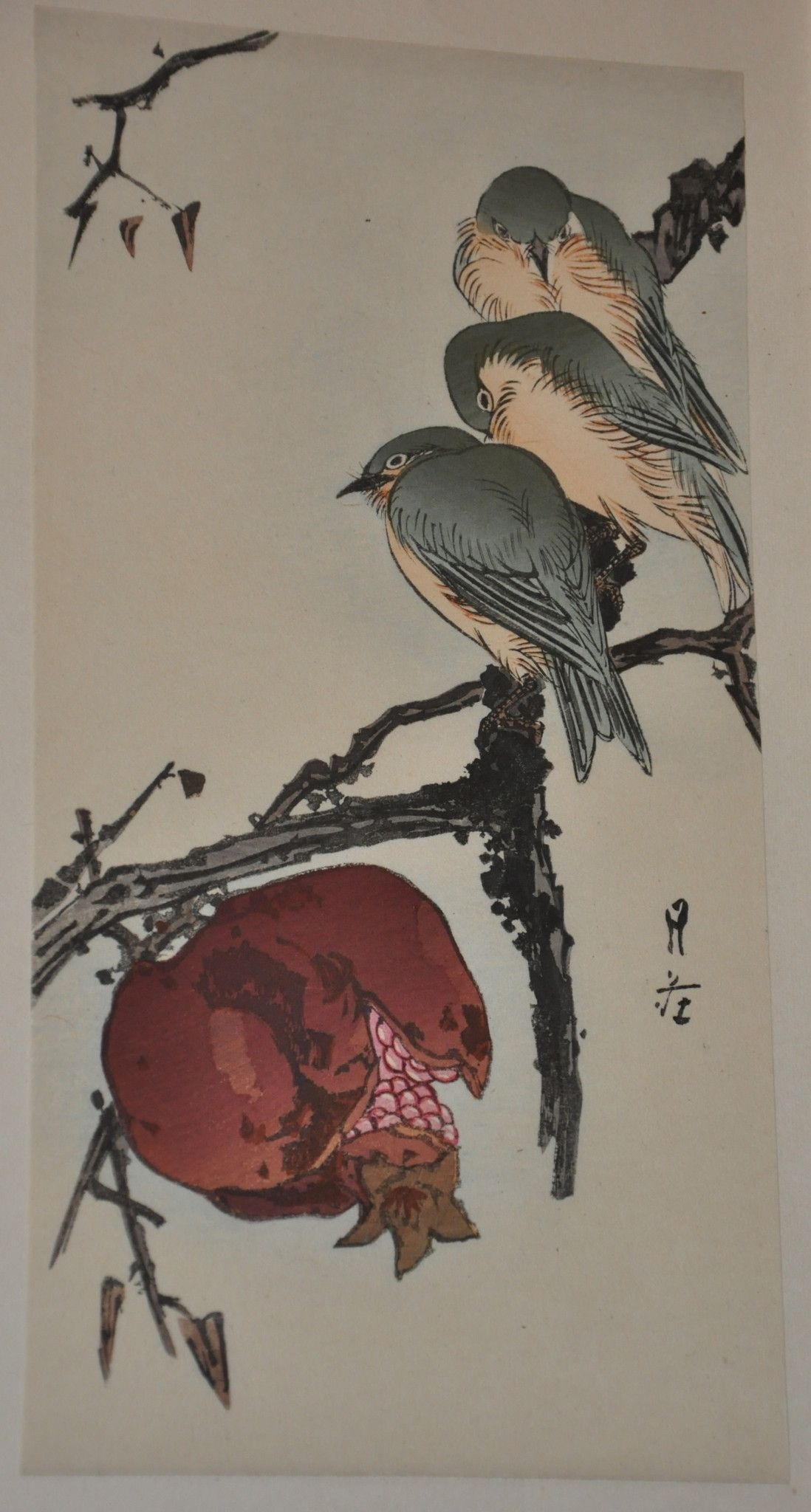 Original Woodblock Printgesso Yoshimoto Of Pomegranate And for Current Framed Asian Art Prints