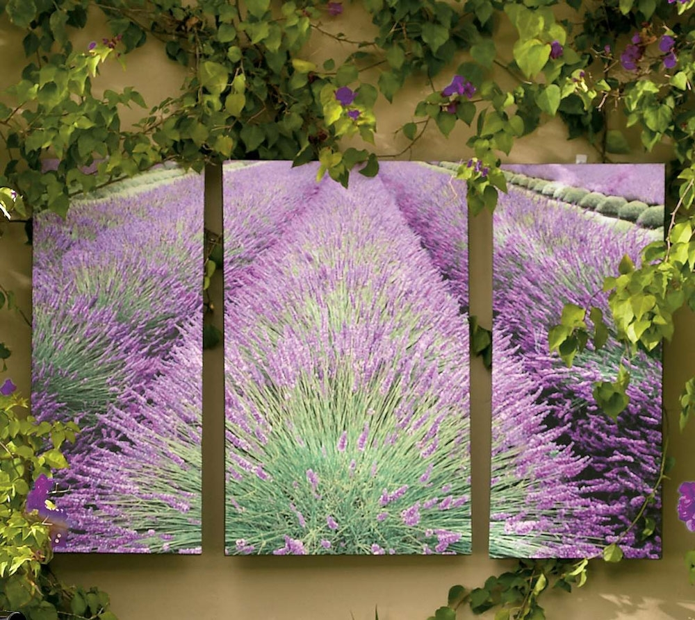 Outdoor Wall Art – So That's Cool Pertaining To Best And Newest Garden Wall Accents (Gallery 11 of 15)