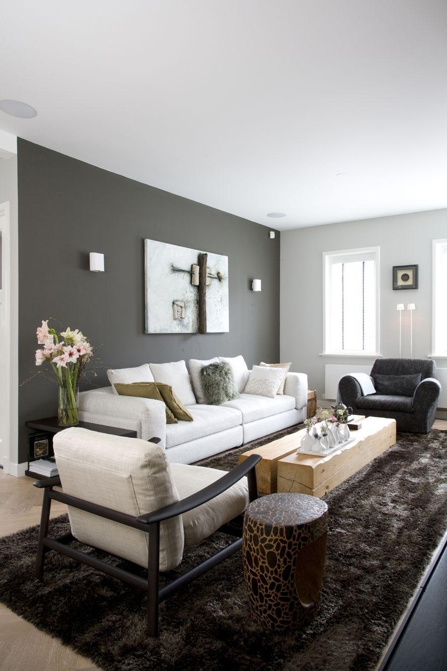 Peinture Salon Grise – 29 Idées Pour Une Atmosphère Élégante Within Most Current Neutral Color Wall Accents (View 12 of 15)