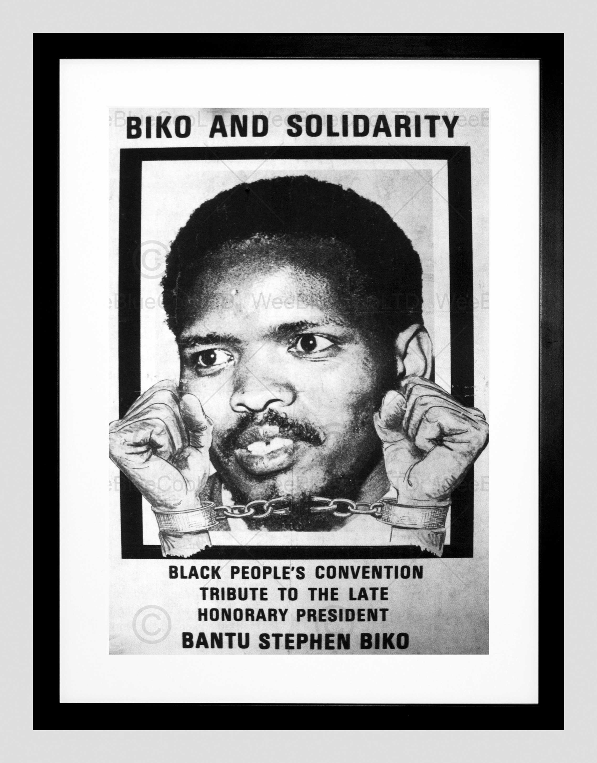 Political Steve Biko Anc Apartheid South Africa Framed Art Print For Most Current South Africa Framed Art Prints (View 4 of 15)