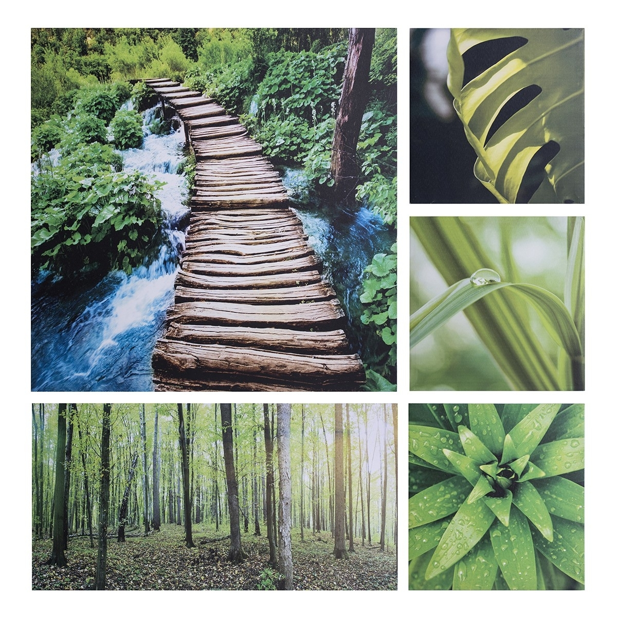 Prints Forest Canvas Print (Set Of 5) | Wall Art | Jysk Canada Within Most Current Jysk Canvas Wall Art (View 10 of 15)