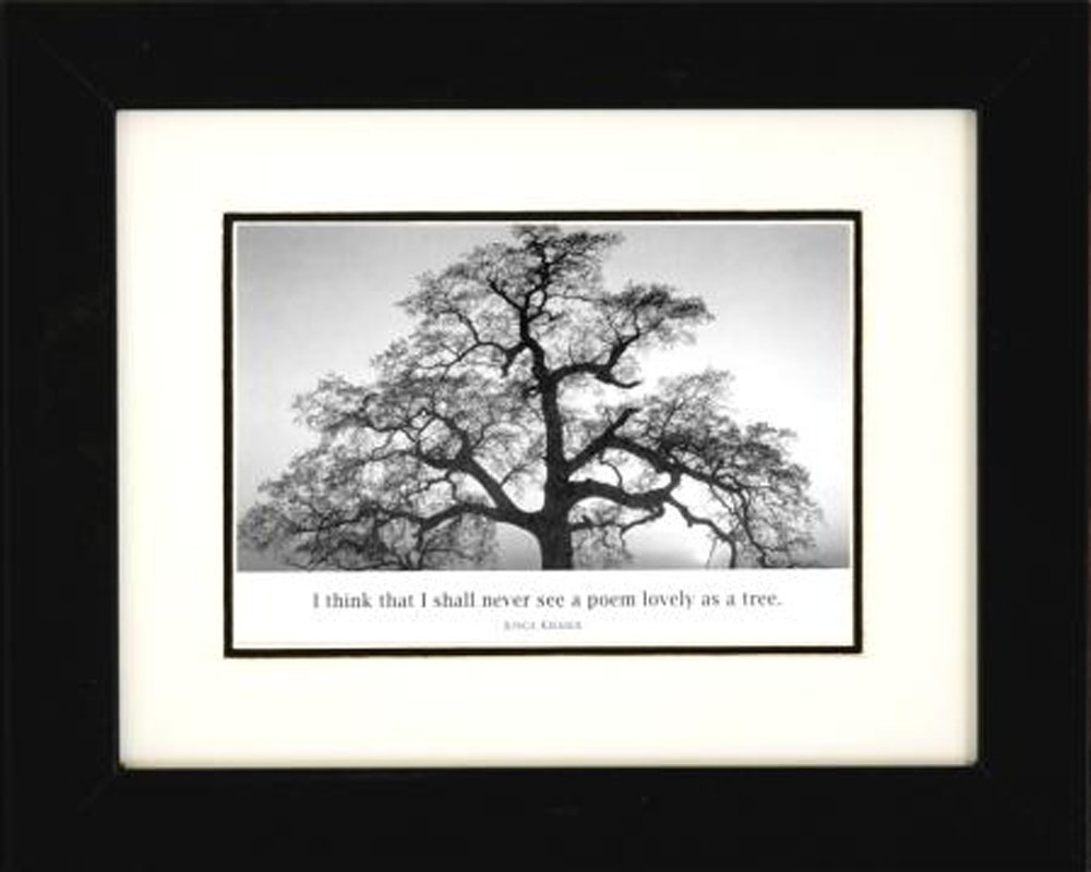 Professionally Framed Oak Tree At Sunsetansel Adams Black For Most Popular Famous Art Framed Prints (View 15 of 15)