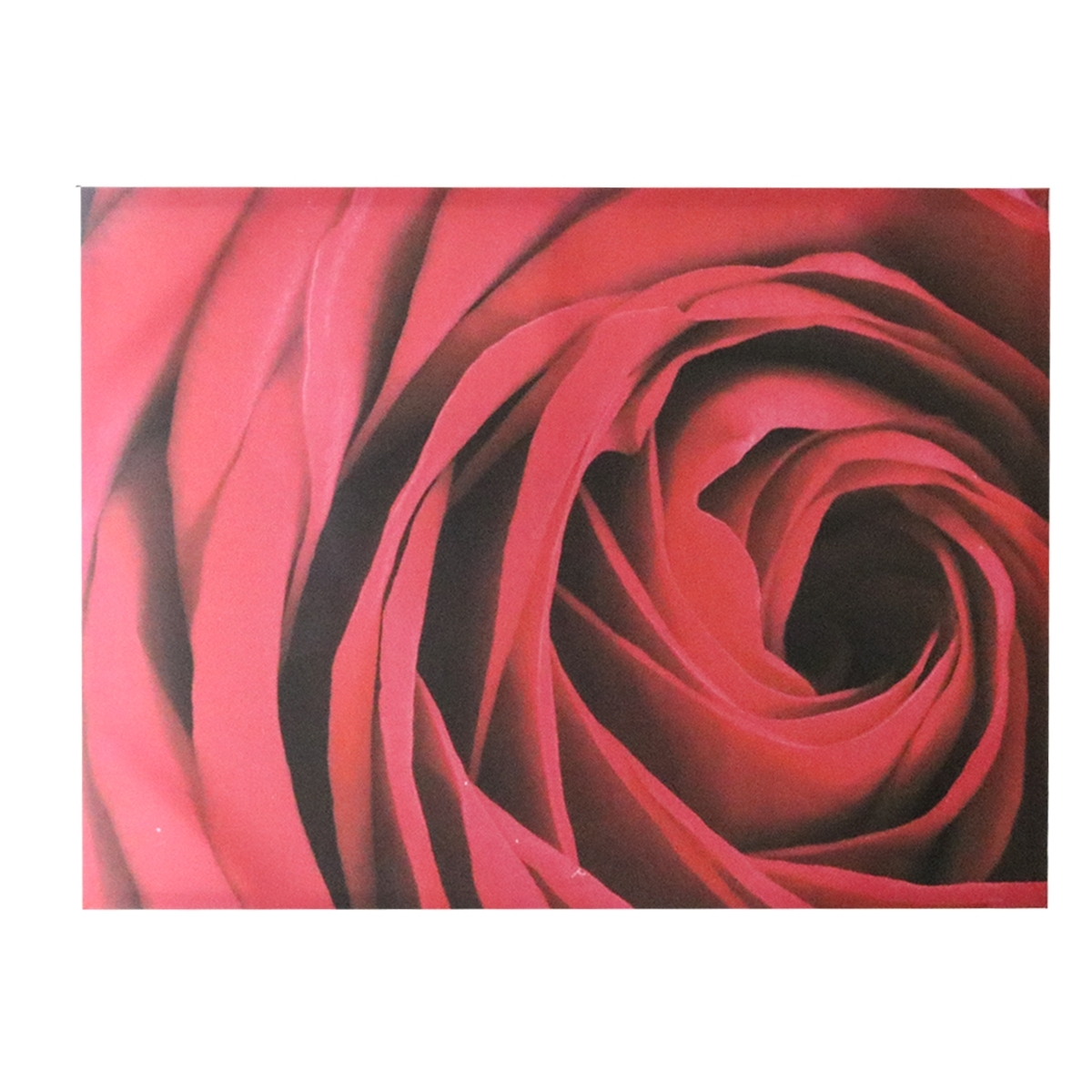Red Rose Canvas Wall Art | Harry Corry Limited Throughout Most Recent Roses Canvas Wall Art (Gallery 6 of 15)