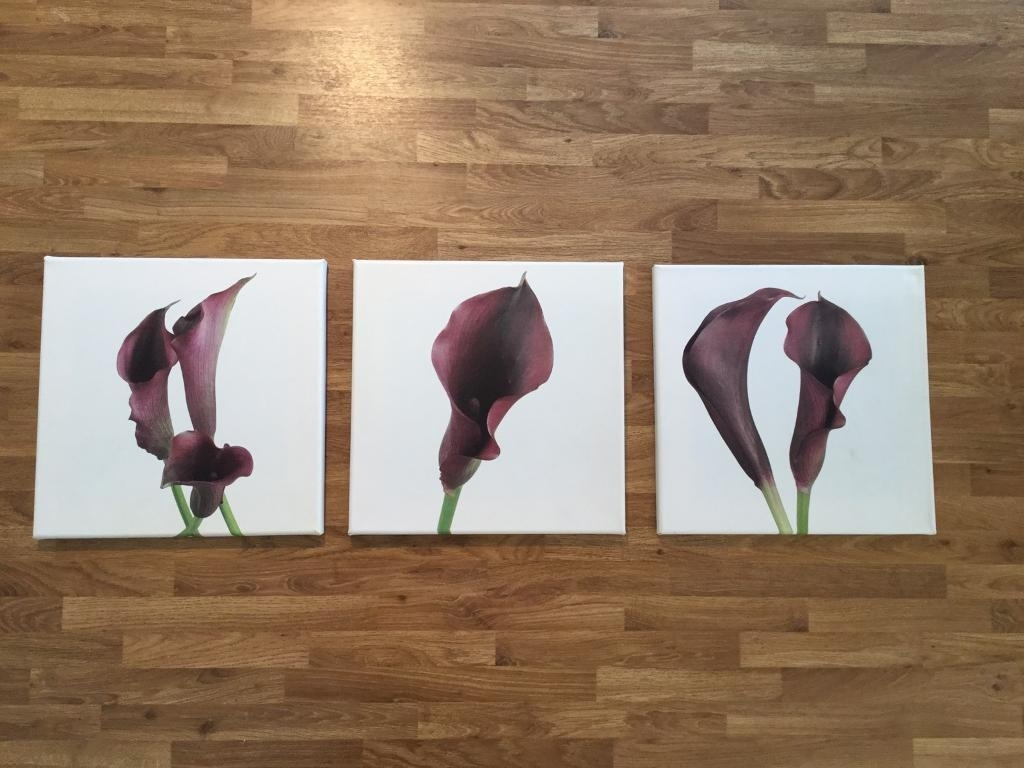 Set Of 3 Purple Calla Lily Wall Art Canvas Prints/pictures 30Cm X With Current Gumtree Canvas Wall Art (View 13 of 15)