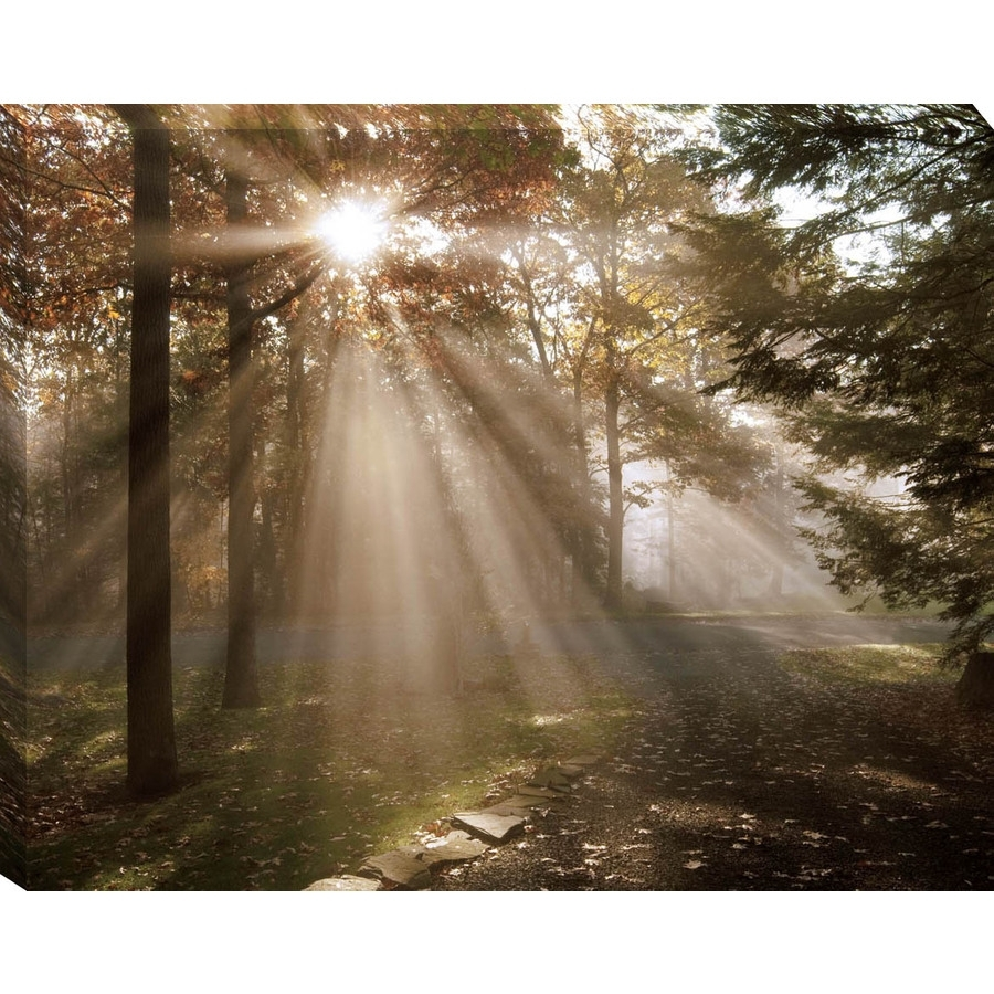 "Shop 30"" X 38"" A New Day Canvas Wall Art At Lowes Throughout 2018 Lowes Canvas Wall Art (View 3 of 15)"
